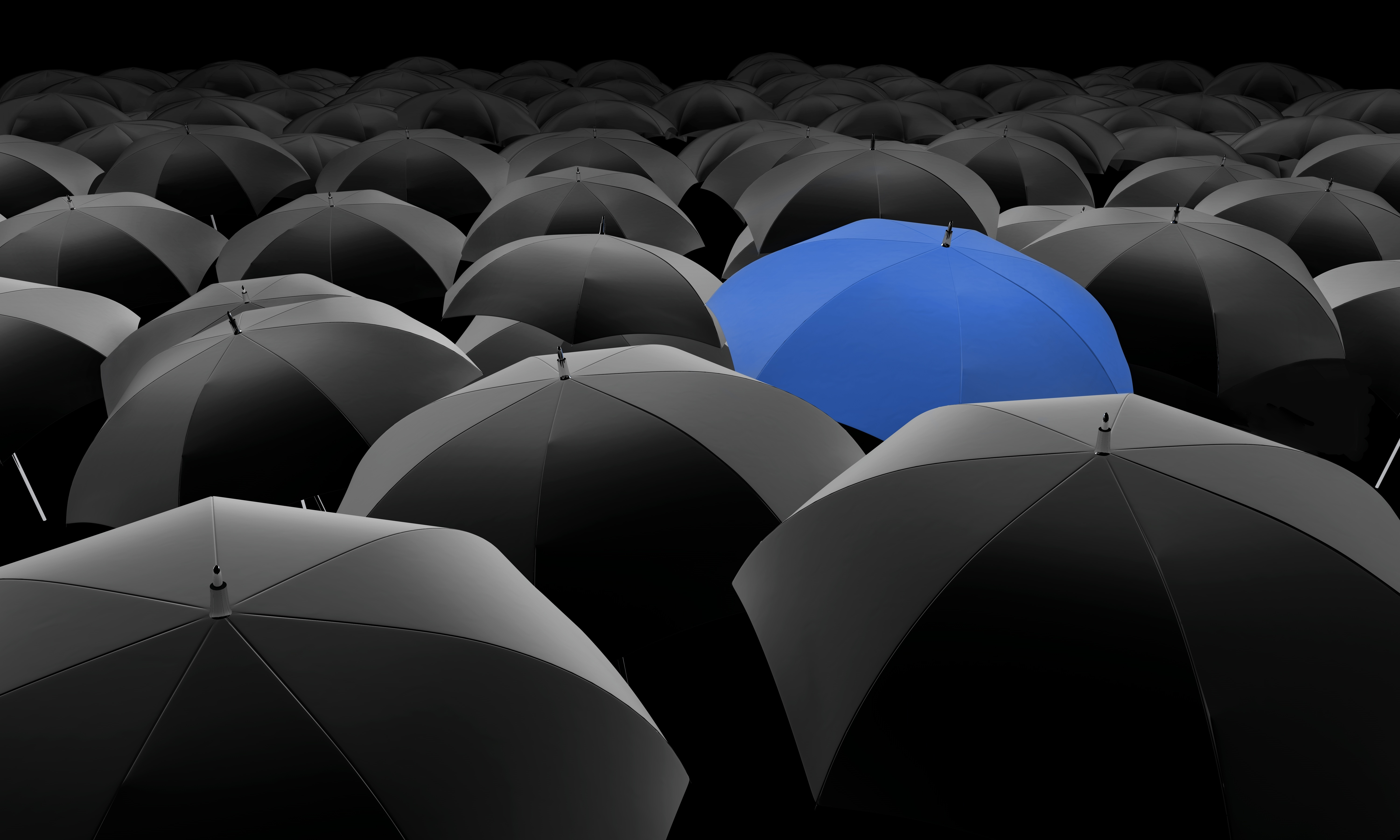 Umbrella company expenses to be disallowable in 2016